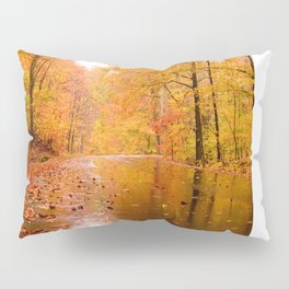 Fall Holidays Pillow Sham