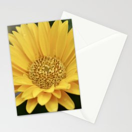 Yellow Flower Stationery Cards