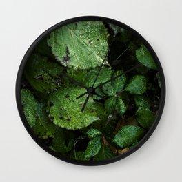 Plantas Wall Clock