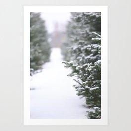 Snow Tree Farm Art Print