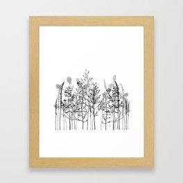 Wild flowers. Black and white Framed Art Print