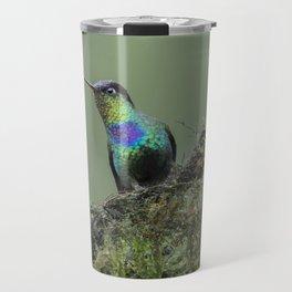 Costa Rican Fiery-throated Hummingbird in the rain Travel Mug