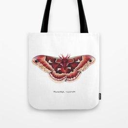Promethea Silkmoth (Callosamia promethea) Tote Bag