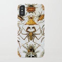 Haeckel Illustration Spiders iPhone Case