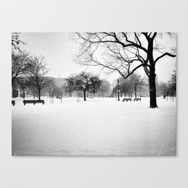 Trinity Bellwoods in the Snow Canvas Print