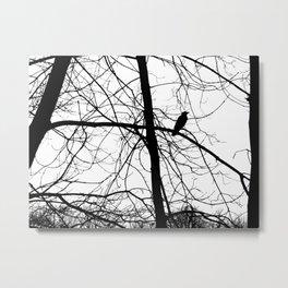 The Raven #2 Metal Print