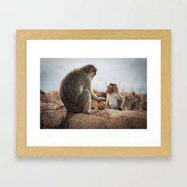 Monkey's Framed Art Print
