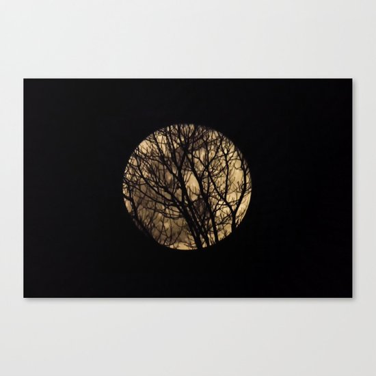 Full Moon though the trees Canvas Print