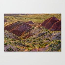 Warm evening light at Painted Desert Canvas Print