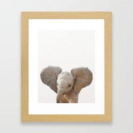 Baby Elephant, Baby Animals Art Prints by Synplus Framed Art Print
