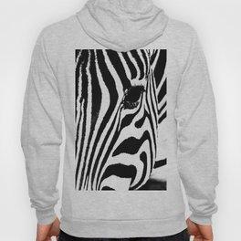 Zebra close up Hoody