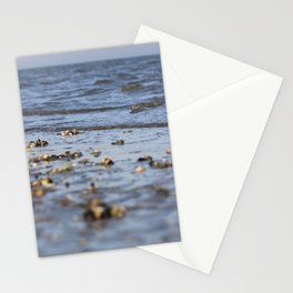 Shells in the sand 4 Stationery Cards