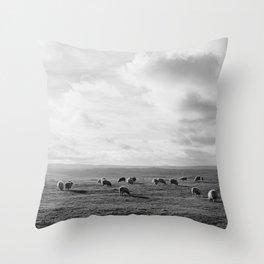 Sunlit sheep on a hilltop at sunset. Derbsyhire, UK. Throw Pillow