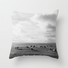 Sunlit sheep on a hilltop at sunset. Derbsyhire, UK. Throw Pillow