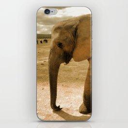 Wildlife big Elephant iPhone Skin
