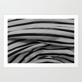 raybands Art Print