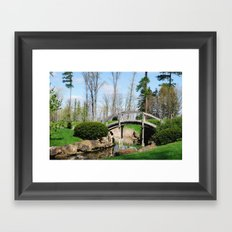 Across the stream Framed Art Print
