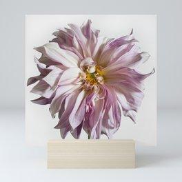 Dahlia Flower #1 Mini Art Print