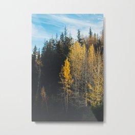 Autumn at Bird Creek III Metal Print