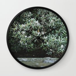 Streams of Living Water 2 Wall Clock