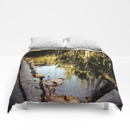 Reflections.  Comforters