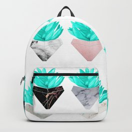 Assorted Succulents Backpack