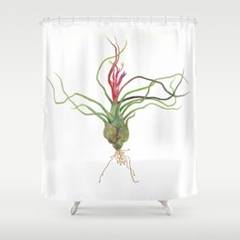 Twisty Tillandsia Shower Curtain