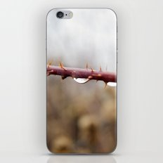 Thorns and Water iPhone & iPod Skin