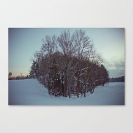 Frozen forest. Canvas Print