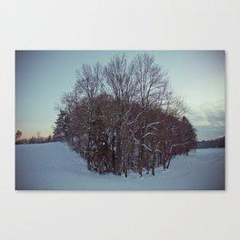 Frozen forest. Canvas Print