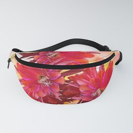 The Cheer Fanny Pack