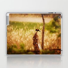 Bird Photography Laptop & iPad Skin