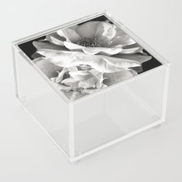 Essence Acrylic Box