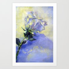 White Rose on White Background Art Print
