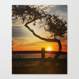 Sunset on Santa Monica beach, California, USA Canvas Print