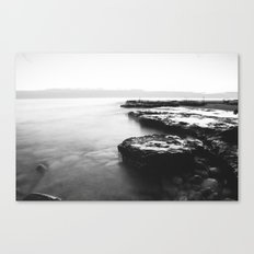 Water Moss Canvas Print