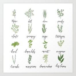 Herb Chart   Whimsical Fresh Herb Chart   Handlettered Art Print