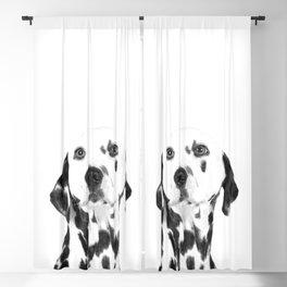 Black and White Dalmatian Blackout Curtain