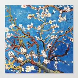 Van Gogh Branches of an Almond Tree in Blossom Canvas Print