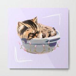 Cat in a Bowl Metal Print
