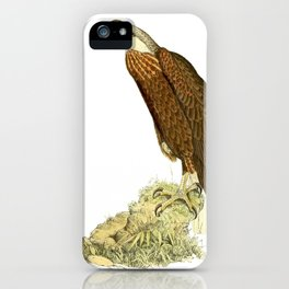 Haliaeetus vociferoides 1868 2 iPhone Case