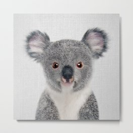 Baby Koala - Colorful Metal Print