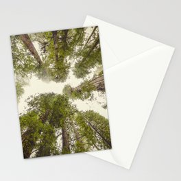Into the Mist - Nature Photography Stationery Cards