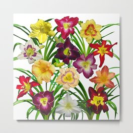 Display of daylilies I Metal Print
