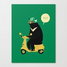 scooter bear green Canvas Print