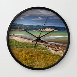 Elephant Seals at Año Nuevo State Park Wall Clock