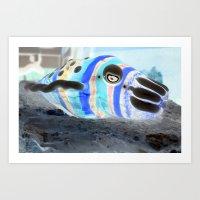 Mollusc Dreams Art Print
