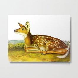 Common American Deer Metal Print