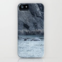 Two Humpback Whales in Resurrection Bay iPhone Case