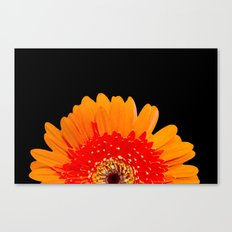 ORANGE GREETING Canvas Print